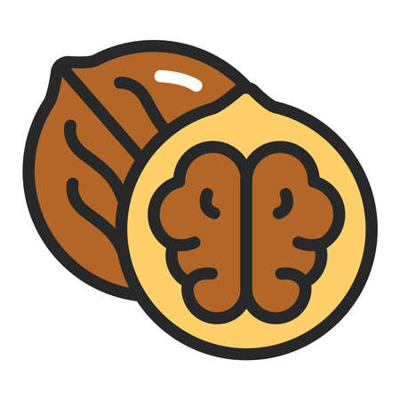 Walnut color line icon. Healthy, organic food. Proper nutrition. Isolated vector element. Outline pictogram for web page, mobile app, promo.