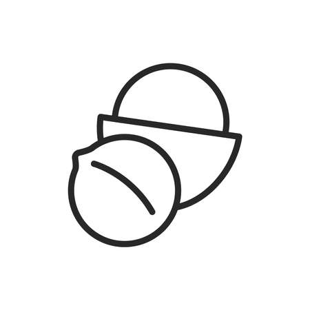 Nazel nut black line icon. Isolated vector element. Outline pictogram for web page, mobile app, promo.