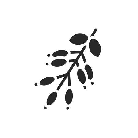 Barberry black glyph icon. Cooking ingredient. Vector illustration