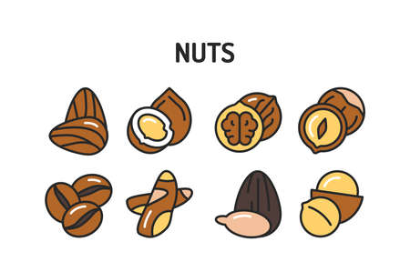 Nuts and seeds color line icons set. Isolated vector element. Outline pictograms for web page, mobile app, promo Illustration