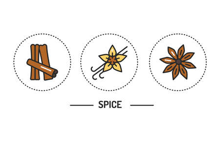 Spices color line icons concept. Vector illustration. Illustration