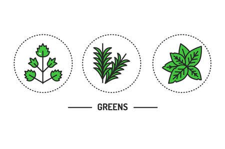 Greens color line icons concept. Vector illustration