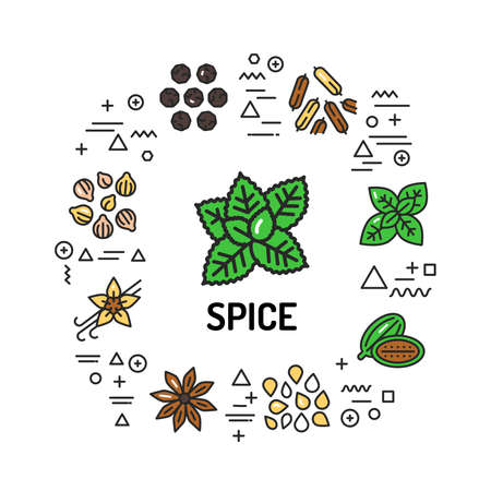 Spice web banner. Infographics with linear icons on white background. Creative idea concept. Isolated outline color illustration