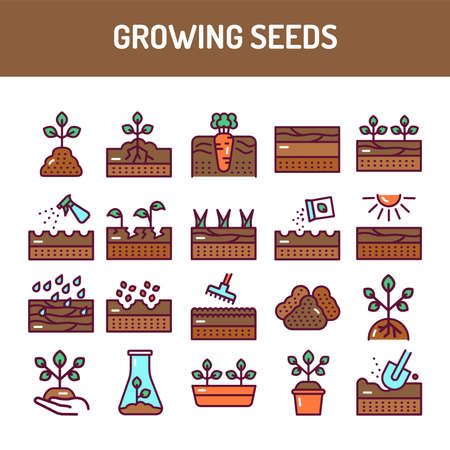 Growing seeds color line icons set. Pictograms for web page, mobile app, promo.