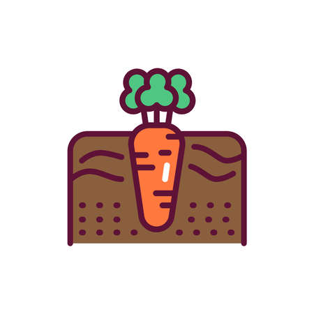 Growing carrot line icon. Isolated vector element. Illustration