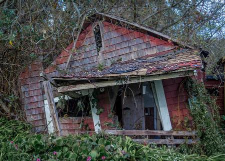 barnwood: Forgotten House Stock Photo