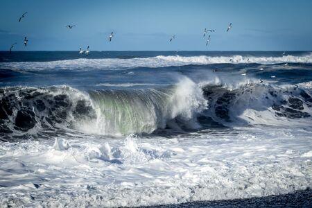 crashing: Crashing Wave