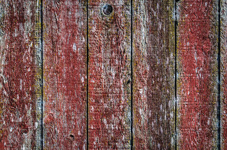 Side of a Barn photo
