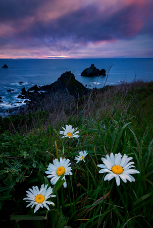 A Seascape Sunset in Humboldt County, California