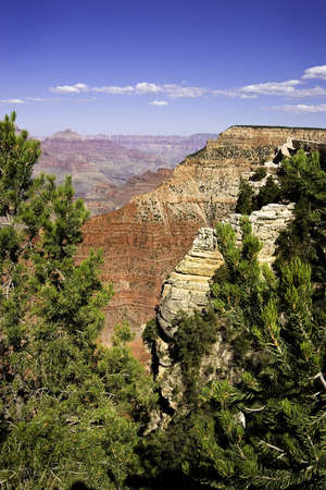 sidelit: Spectacular view of the Grand Canyon framed by trees Stock Photo