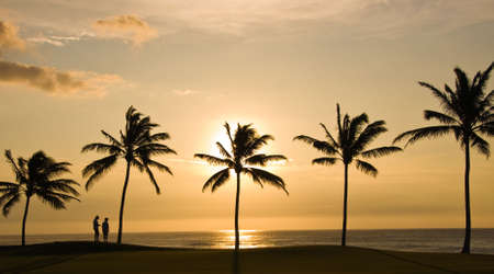Sunset framed by palm trees with people looking to sea photo