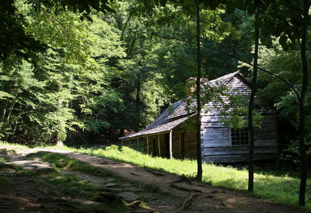Primitive wooden building in rustic forest setting photo