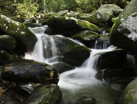 Water cascading over moss covered rocks in forest setting Stock Photo - 2745848
