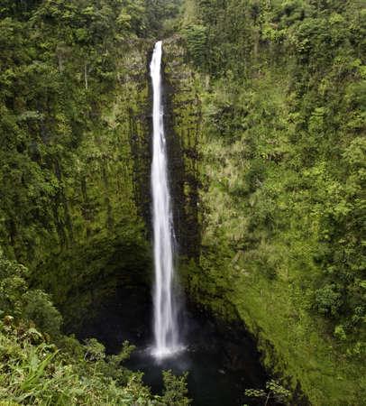 Akaka Falls on the Big Island of Hawaii Stock Photo