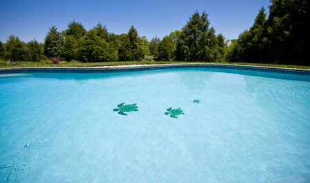Water level view of a pool stretching into the distance and showing three tiled turtles on the floor of the pool Stock Photo - 3113352