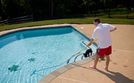 Middle aged man brushing a swimming pool with a single dog in the water