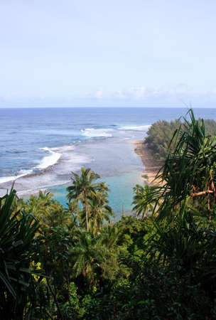Ke'e beach surrounded by green trees, ferns and palm trees Stock Photo - 4327245
