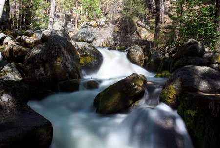 Forest river flowing gently over moss covered rocks Stock Photo - 4924593