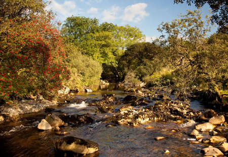 Rocky river bed in secluded valley Stock Photo - 5622583