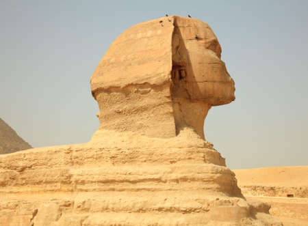 Smoggy view of Sphinx at Giza near Cairo in Egypt photo