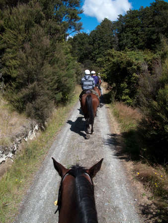 Row of horse riders in line going down a lane photo