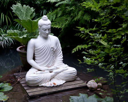 buddha face: Statue of Buddha on wooden platform in pool surrounded by ferns Stock Photo