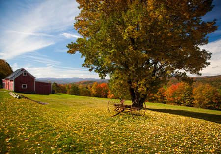 Fall leaves add color to a bright Vermont rural scene in the Fall Stock Photo - 8004161