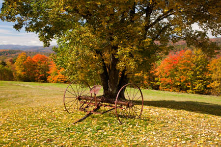 fall scenery: Fall leaves add color to a bright Vermont rural scene in the Fall