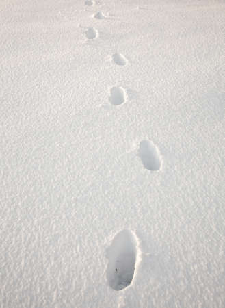 sidelit: Set of footsteps disappearing into the distance in deep sidelit snow