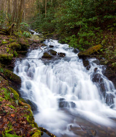River floods down the hillside in the Smoky Mountains in spring Stock Photo - 9053424