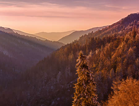 Sun setting in valley in Smokies as snow covers the branches of trees Stock Photo