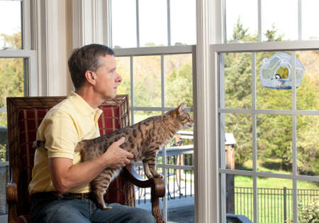 bird feeder: Senior man with bengal cat watching chickadee bird on birdfeeder from chair Stock Photo
