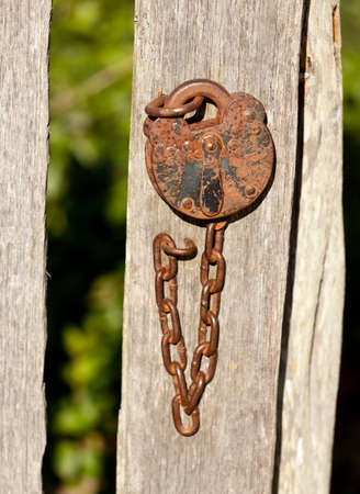 Rusty old padlock and chain fastening a garden gate photo