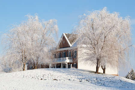 weeping willow: Snow covered weeping willow trees frame a modern single family home in suburbs Stock Photo