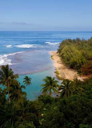 Vertical image of Kee beach from Kalalau trail on Na Pali coast of Kauai Stock Photo - 12451421