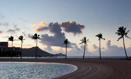 Palm trees by side of beach in Waikiki at dawn Stock Photo - 12451393