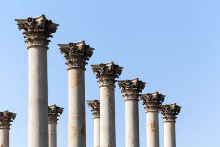 arboretum: Old marble columns from Capitol building in National Arboretum in Washington DC