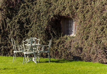 Cast iron garden table and chairs on lawn by bush on wall photo