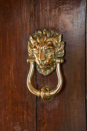 polished: Door knocker on polished oak door in the shape of a brass lion head