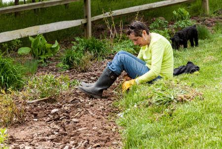 backyard woman: Woman gardener sits on grass when weeding flowerbed Stock Photo