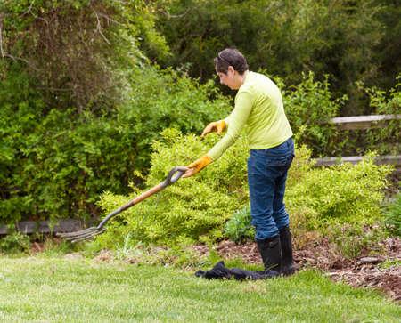 tosses: Woman gardener tosses away garden fork in frustration when weeding flowerbed