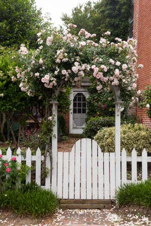 portones: Flores amarillas y rojas creciendo a lo largo de una cerca blanca en el jard�n tradicional