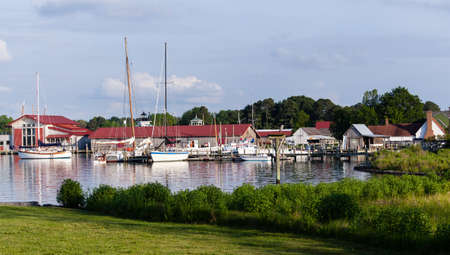Yachts and boats in harbour of St Michaels on Chesapeake bay with heron Stok Fotoğraf