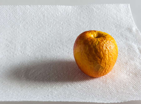 sidelit: Old wrinkled apple sitting on a white paper sheet with sidelighting and shadow Stock Photo