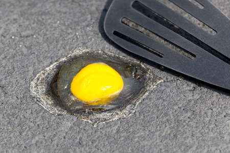 Breaking egg onto hot road surface to see if it fries in summer
