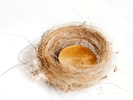 Nest egg of golden eagle coin in woven birds nest as concept of wealth Stock Photo - 14474649