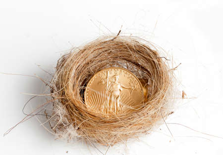Nest egg of golden eagle coin in woven birds nest as concept of wealth photo