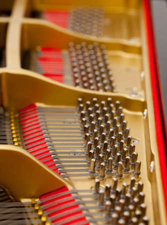 classical mechanics: Detailed interior of grand piano showing the strings, pegs, sound board with focus on one section Stock Photo