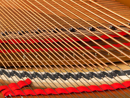 gold string: Detailed interior of grand piano showing the strings, pegs, sound board with focus close to the camera viewpoint