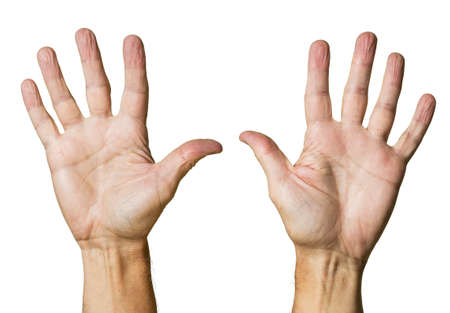 Pair of caucasian hands of senior middle aged male isolated against white Stock Photo - 14946052